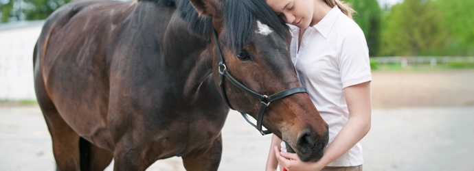 Giving Horses Pills Just Got Easier