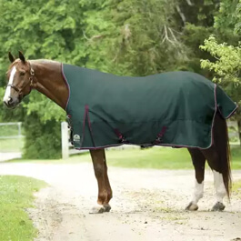 Horse wearing a blanket