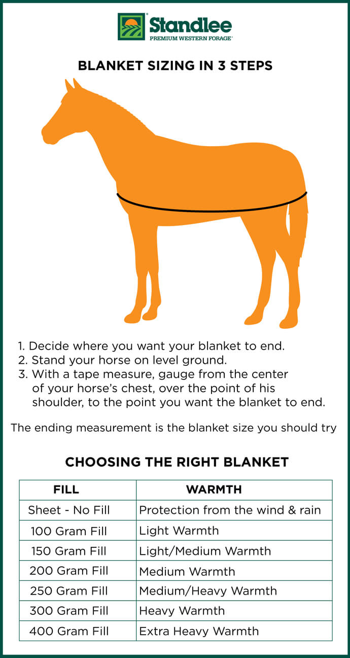 Horse blanket size infographic