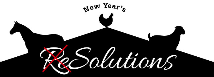 New Year's Solutions for the Farm: Part 1 - Equine Solutions