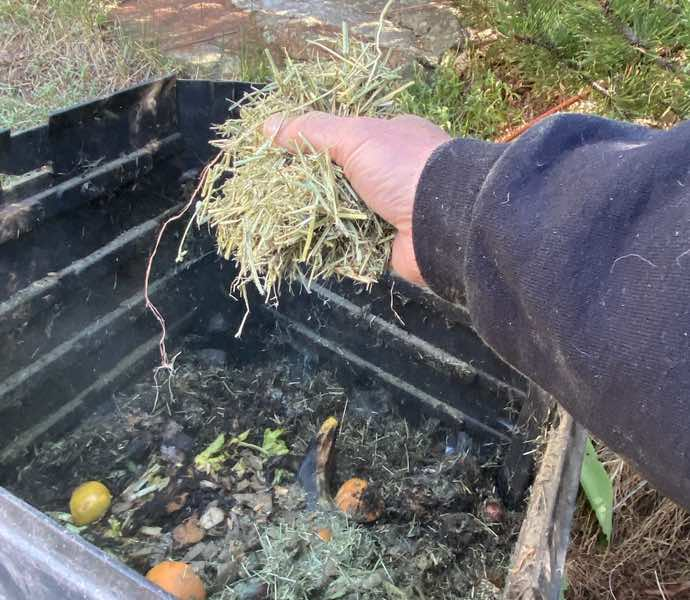 Putting straw in a compost bin