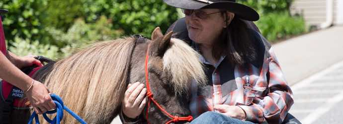 Lifting Spirits Miniature Therapy Horses