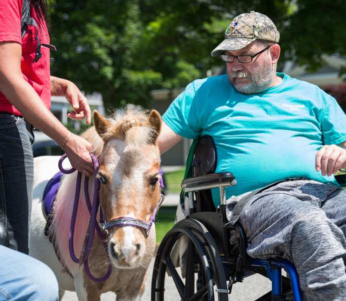 Man with miniature therapy horse